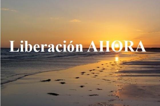 http://liberacionahora.files.wordpress.com/2010/08/banner-l-a3-e1281475040893.jpg?w=560