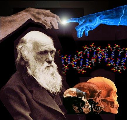 Resultado de imagen de Sabemos que, la teoría de la evolución post-darwiniana y la biología cuántica descubren enigmáticas correlaciones similares en el organismo y entre el organismo y su entorno