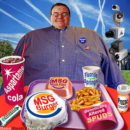 david_dees_aspartame_cola_msg_burger_fluoride_springs1