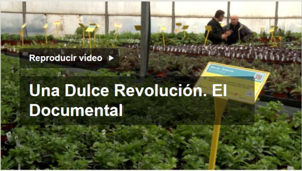 dulce-revolucion-documental
