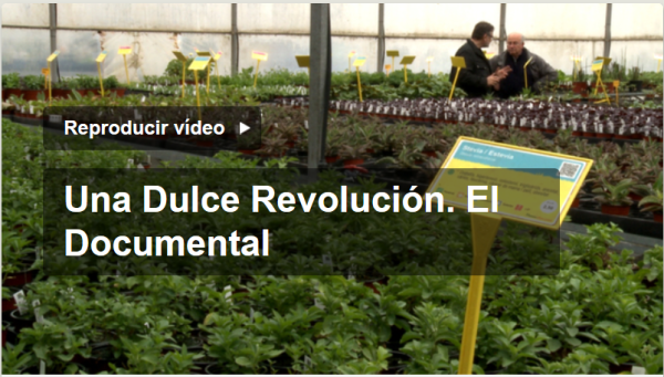 https://liberacionahora.files.wordpress.com/2016/10/dulce-revolucic3b3n-documental.png?w=600&h=341